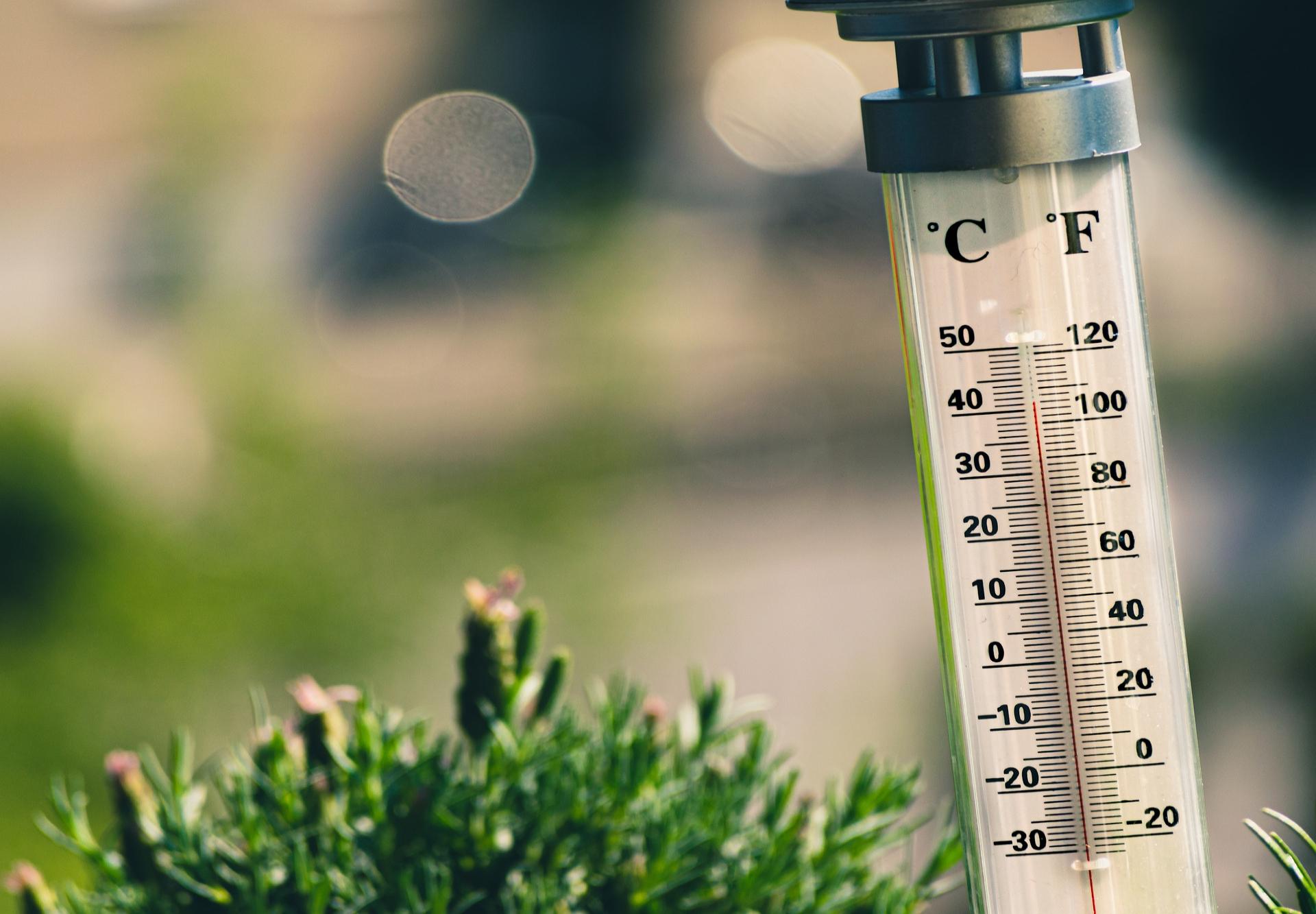 Julio se consolida como el mes más cálido de la historia
